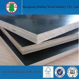 La película de la buena calidad hizo frente a la madera contrachapada, madera contrachapada de la construcción del precio bajo