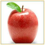 Законсервированный отрезанный Apple в реальных малышах babyfood сока