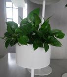 Uispair 100% Vloer van het Staal om de Pot van de Bloem voor de Moderne Decoratie van de Tuin van het Bureau