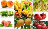 Sellerie-Rüben-Ingwer Caroot Saft-Schrauben-trinkende Gemüsemaschine
