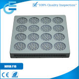 高いPerformance 240X3w Panel LED Grow Light