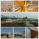 鉄骨構造の養鶏場はハウジング装置によって取除いた