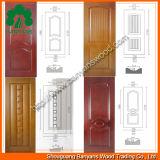 Panneaux de revêtement décoratifs de trappe intérieure Lastest de conception en gros de la Chine