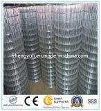 Acoplamiento de alambre cuadrado galvanizado con poco carbono de /Welded del acoplamiento
