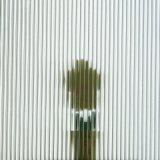стекло Forsted утюга 3.2mm низким кисловочным сделанное по образцу стеклом Tempered для фотоэлемента