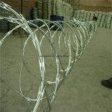 電流を通されたかみそりの金網の塀(CBT-65)