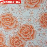 高品質のデザイン花によって塗られる表面の鋼鉄コイル