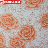 花デザインは高品質と表面の鋼鉄コイルに塗った