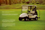 Pure Electric Golf Cart Du fabricant professionnel international Dongfeng