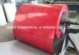 A cor revestiu a bobina de aço galvanizada /Prepainted de aço galvanizada das bobinas (PPGI/PPGL)/a bobina de aço galvanizada PPGI/Prepainted cores de Ral