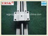Отечественное Chromed Plated Linear Guideway с Support