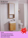 Module de salle de bains (NT-003)