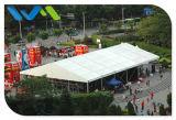 De grote Openlucht Industriële Tent van het Pakhuis van de Opslag voor Verkoop