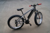 フレーム26X4 48V 750Wの中間モーター電気自転車のリチウム電池