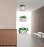 Uispairの鋼鉄庭の花プランターのあたりでハングする現代オフィスの庭Docoration