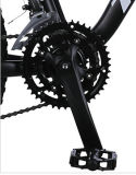 21 superiori Speed Alloy Mountain Bike con Shimano Derailleur