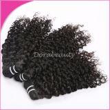 ペルーの巻き毛の人間のバージンの毛を編む熱い販売の毛