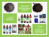 有機性高品質の海藻エキスの高品質