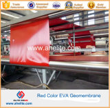 Fabbrica Film Blowing HDPE Geomembrane 8m Width Made in Cina