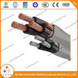 Aluminium de câble d'entrée de service de l'UL 854/type de cuivre expert en logiciel, type R/U Ser 6 6 6 6