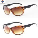 Os melhores vidros de Sun Eyewear da forma do desenhador com Ce aprovaram