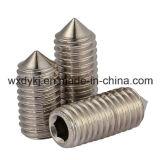 Hexagon-Kontaktbuchse-Einstellschraube des Edelstahl-304 mit Kegel-Punkt-Fabrik von China-LÄRM 914
