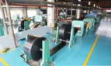 Förderband-hohe Leistungsfähigkeits-Übertragung für industrielles