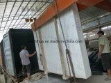 Het Witte Marmer van China Chiva met Grijze Wijnstokken voor Plak/Tegel/Bovenkant Conter