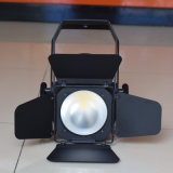 Lumière chaude de studio de C.P. >90ra 200W DEL de blanc pour le pelliculage