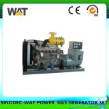 Biogas-Generator-Set 200kw mit Cer, ISO-Zustimmung (WT-200GF)