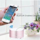 Haut-parleur portatif stéréo sans fil en aluminium de Bluetooth avec le microphone mains libres de haut-parleur/haut-parleurs intrinsèques de Portable de slot pour carte de FT d'écart-type de micro