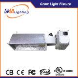 Wachsen keramisches Metallhalogenid des Hersteller-315W helles Digital-elektronisches Vorschaltgerät