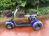 3wheelsのCitycoco Harleyのスクーター