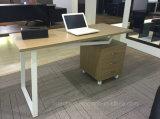 オフィス部屋(WE05)のための2017簡単で熱い販売の木の机