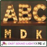 형식 LED 큰천막 편지 표시 크리스마스 점화