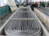 """un buen tubo en forma de """"u"""" del acero inoxidable del duplex del fabricante S31254 (254SMo/NAS 185N)"""