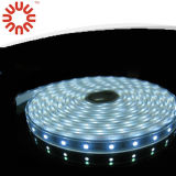 RGB flexible / blanco del color SMD2835 LED Strip Lamp