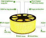 Indicatore luminoso di striscia impermeabile eccellente certificato RoHS del CE 220/110V 5050 LED