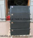 """Ds2065 zwei 6.5 """" bidirektionale Zeile Reihen-Lautsprecher"""