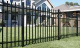 O preto quente da venda galvanizou a cerca com alta qualidade ISO9001 Certificated