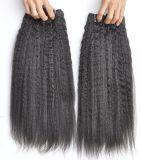 L'armure brésilienne de travail de cheveu de produits capillaires empaquette le cheveu droit crépu 105g, premiers paquets de Vierge de prolonge de cheveux humains
