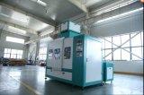 Máquina de embalagem da nêspera com transporte e a máquina de costura
