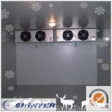 Chambre froide modulaire de jus de fruits