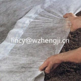 Alto tessuto non tessuto UV di resistenza ss Spunbonded di Strenth di buona qualità per agricoltura
