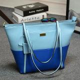 Colorare la signora d'avanguardia Emg4730 del progettista di marca di modo delle borse del progettista di scontro