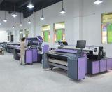 Stampatrice industriale di Digitahi della cinghia Fd1868 per i sacchetti della tela di canapa