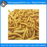 De Droge Meelwormen van de lagere Prijs voor het Voedsel van de Vogels van het Kippevoer van het Voedsel voor huisdieren van het Gevogelte