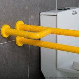 Le mur pour parqueter l'encavateur de salle de bains clôture l'accoudoir de toilette de débronchement de personnes âgées