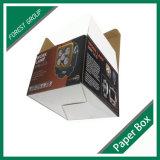 De zelfsluitende Doos Van golfkarton van de Bodem (FP020000400)