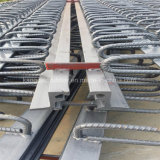 Junção de expansão modular de China para a construção de ponte